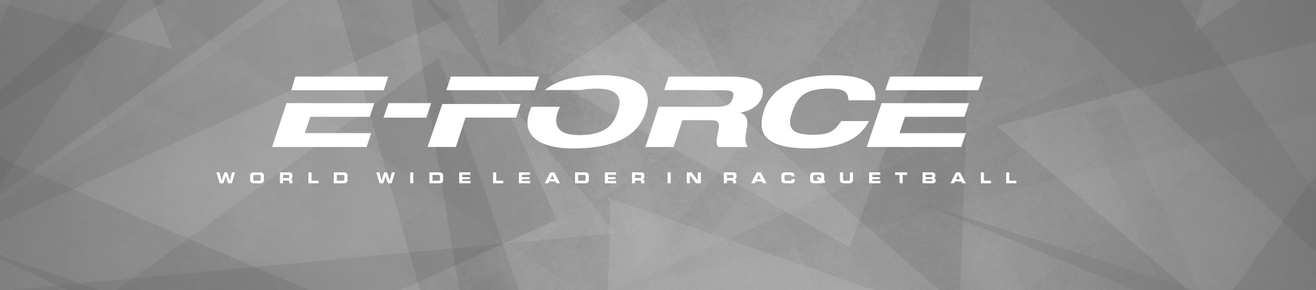 grey eforce logo banner