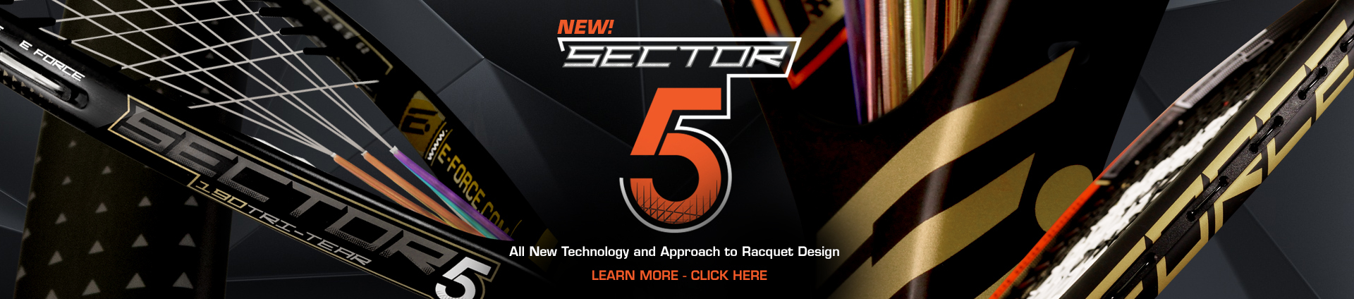 sector 5 web banner BS
